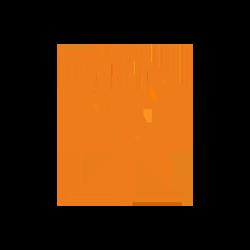 Houses Needing Repairs